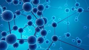 סמינר ביולוגי וחומר מעובה