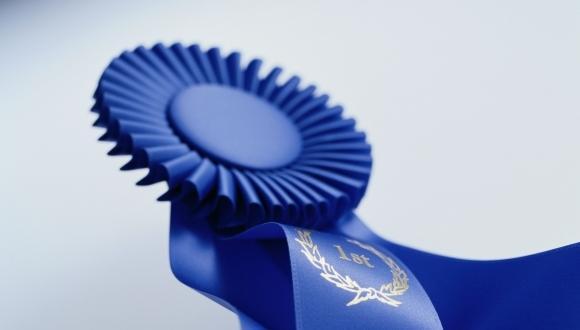 """פרסים לחברי סגל מביה""""ס למדעי המתמטיקה"""