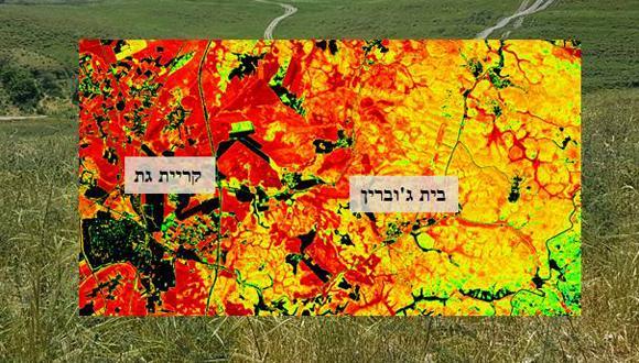 סדנה: ניטור איכות אקולוגית של בתי גידול הצומח בזמן ובמרחב- הגישה המולטידיסציפלינרית